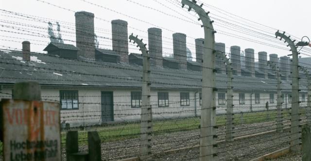 auschwitz-fences-P